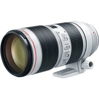 Canon EF 70-200mm f/2.8L III IS Zoom Lens